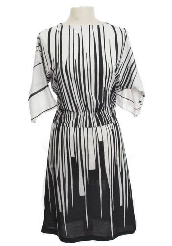 Graphic Zebra Dress