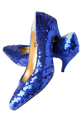 Vintage Blue Dorothy Shoes
