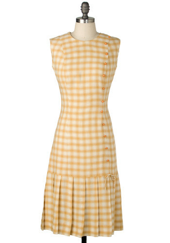 Vintage Picnic In The Park Dress