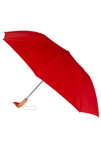 Duck, Duck, Umbrella in Red - Spring, Travel