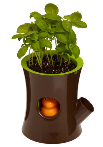 Thirsty Squirrel Self-Watering Plant Pot