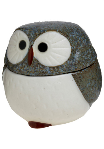 Owl in the Same Spot Keepsake Box - Grey, Dorm Decor, Owls