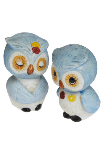 Vintage I Could Eat You Owl Up Shakers in Blue