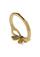 Golden Gift Ring
