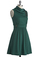 Coach Tour Dress in Jade