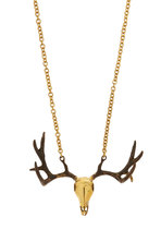 Long Chain Drifter Necklace