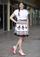 Holland, Michigan Skirt