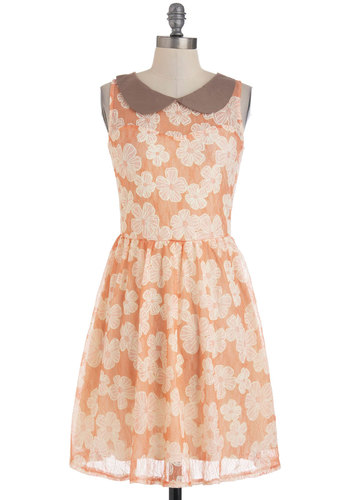 Have A Flowery Picnic Dress - Brown, Floral, Peter Pan Collar, Party, A-line, Sleeveless, Spring, Mid-length, Orange, White, Lace, Vintage Inspired, 60s, Pastel, Cocktail, Scholastic/Collegiate, Sheer, Collared, Daytime Party, Fit & Flare