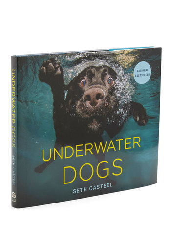 Underwater Dogs - Multi, Quirky