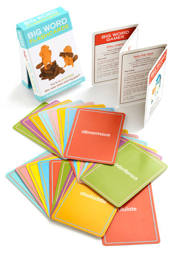 Big Word Flashcards by Knock Knock - Scholastic/Collegiate