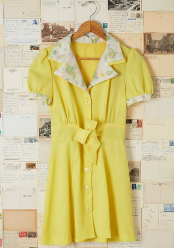 Vintage Picnic Stop Dress