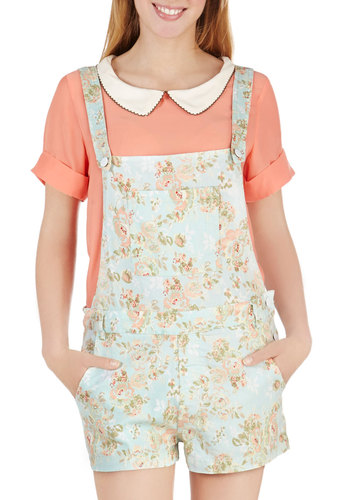 Fun for All Overalls