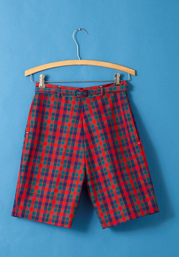 Vintage Fundamentals of Fun Shorts