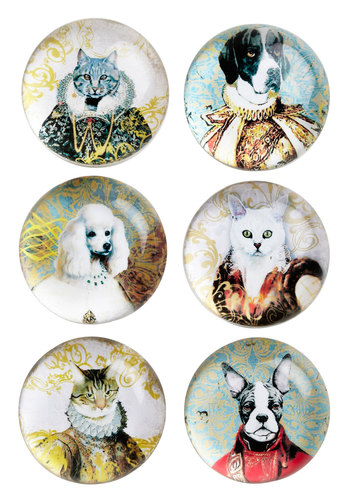 Reigning Cats and Dogs Magnet Set - Multi, Print with Animals, Novelty Print, Cats, Good, Hostess, Critters, Dog