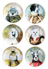 Reigning Cats and Dogs Magnet Set - Multi, Print with Animals, Novelty Print, Cats, Good