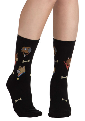Em-bark on Adventure Socks - Black, Multi, Print with Animals, Casual, Good, Novelty Print, Quirky