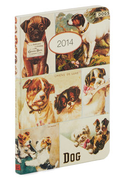 Plan's Best Friend Weekly Planner in Chien