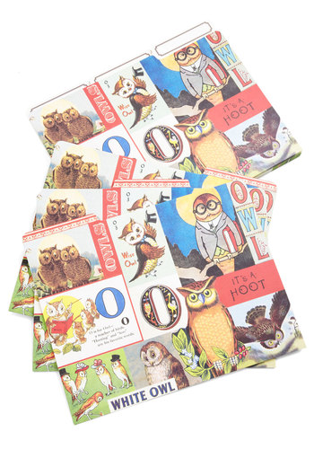 For Your Wise Only Folder Set by Cavallini & Co. - Multi, Owls, Print with Animals, Novelty Print, Work, Scholastic/Collegiate, Good