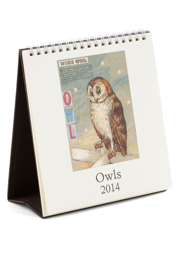 Hoot Has the Date? 2014 Desk Calendar - Multi, Good, Owls, Halloween