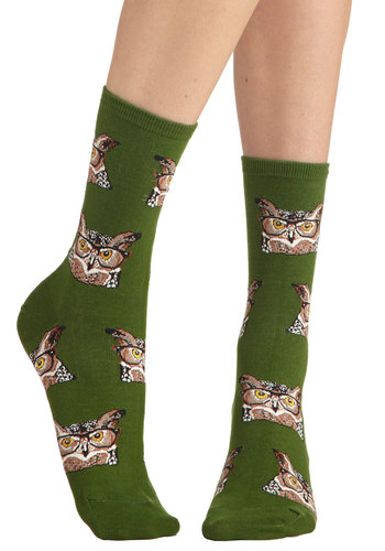 Look Hoots Here Socks - Green, Brown, Black, White, Print with Animals, Casual, Owls, Scholastic/Collegiate, Good, Variation, Novelty Print, Quirky, Knit, Halloween