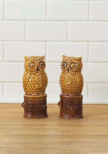 Vintage Owl Shook Up Shaker Set