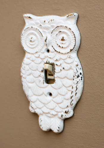 Owl Lights Out Switch Plate Cover - White, Owls, Rustic, Solid, Print with Animals, Halloween, Top Rated