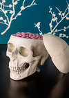Think Outside the Box - Better, Cream, Halloween, Dorm Decor