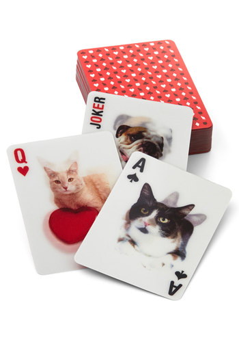Suit Overload Lenticular Playing Cards by Kikkerland - Multi, Cats, Good, Print with Animals