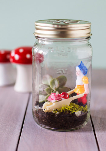 Little Gnome Fact DIY Terrarium - Multi, Quirky, Good, Handmade & DIY