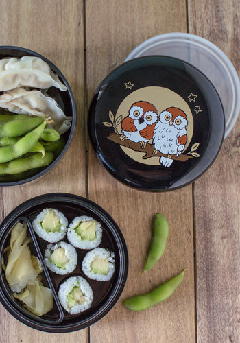Owl About a Snack? Bento Box - Multi, Owls, Good, Travel, Eco-Friendly