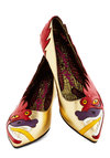 Brave Reviews Flat by Irregular Choice - Print with Animals, Quirky, Low, International Designer, Leather, Multi, Red, Gold, Statement
