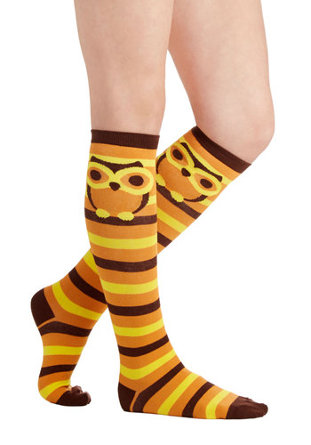 Hoot Goes There? Socks - Knit, Orange, Brown, Stripes, Print with Animals, Casual, Owls, Yellow, Good