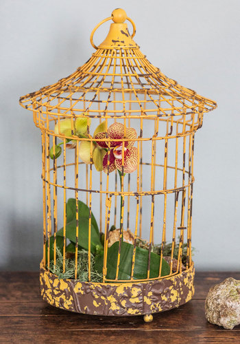 Here Comes the Sunroom Decorative Birdcage - Yellow, Boho, Rustic, Best, Vintage Inspired