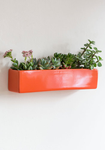 Grow with Your Instincts Wall Planter - Orange, Urban, Mod, Minimal, Good, Multi, Yellow, Blue, Summer