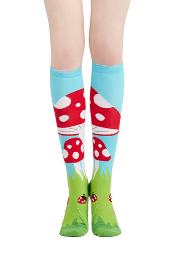 Toadstool, Calm, and Collected Socks - Casual, Mushrooms, Good, Knit, Multi, Red, Green, Blue, Novelty Print, Quirky, Top Rated, Fall, Winter