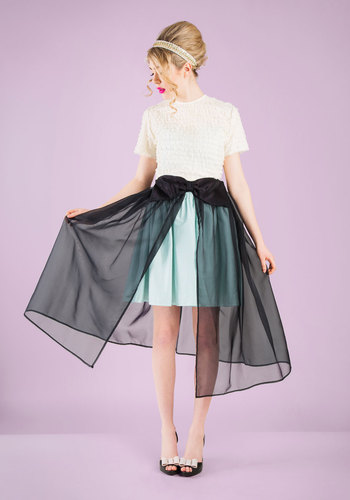 Vintage Prom Promenade Skirt Overlay