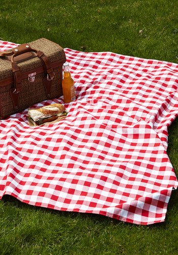 Backyard Bliss Picnic Blanket by One Hundred 80 Degrees - Summer, Americana, Better, Cotton, Woven, Red, White, Checkered / Gingham