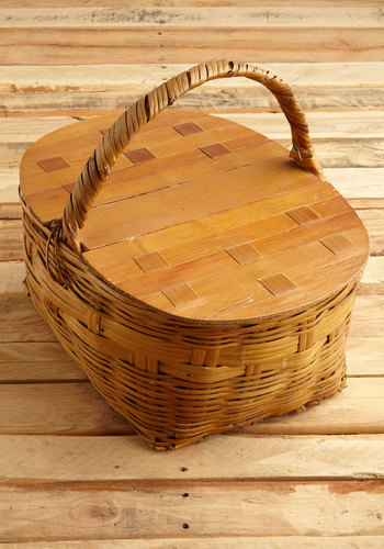 Vintage Collector's Ambition Basket