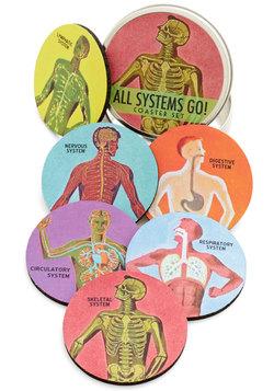 Pour Anatomy a Drink Coaster Set