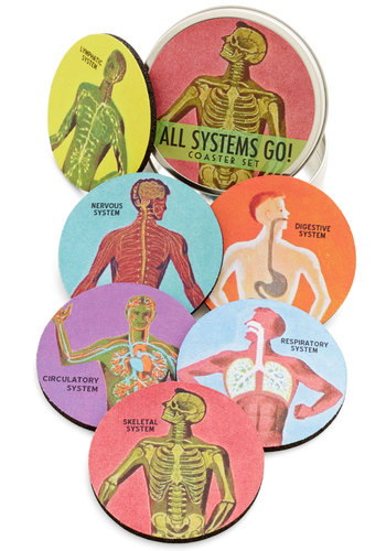 Pour Anatomy a Drink Coaster Set - Multi, Nifty Nerd, Good, Novelty Print, Guys, Graduation