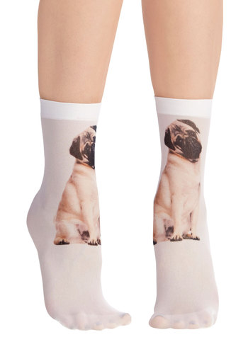 Tabby and You Know It Socks in Pug - Tan, Print with Animals, Quirky, Darling, Critters, Sheer, Knit, Variation, Gals, Under $20, Dog