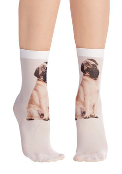 Tabby and You Know It Socks in Pug