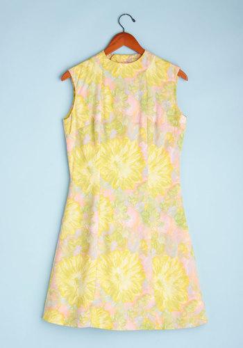 Vintage BBQ & A Dress