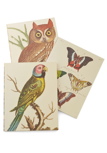 Scenic Scribbles Journal Set by Chronicle Books - Multi, Print with Animals, Owls, Under $20, Critters, Woodland Creature, Gals