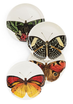Host Like a Butterfly Plate Set