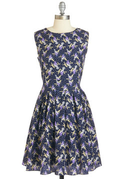 Mister Bluebird Dress in Night