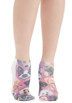 Cosmic Cuddle Socks in Dogs