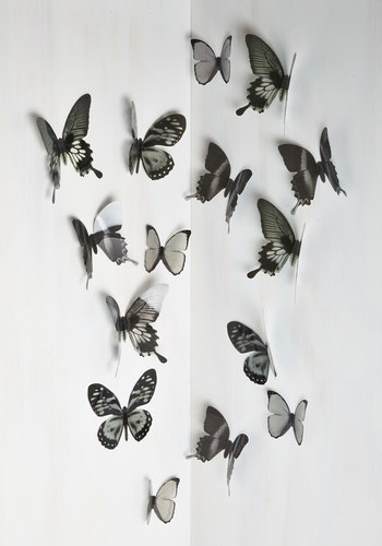 Flutter Free Wall Decor in Black
