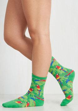 Hem and Macaw Socks