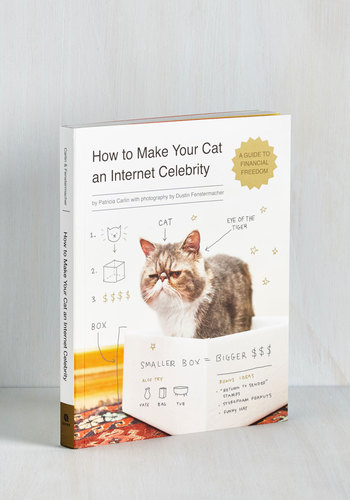 How to Make Your Cat an Internet Celebrity - Print with Animals, Quirky, Cats